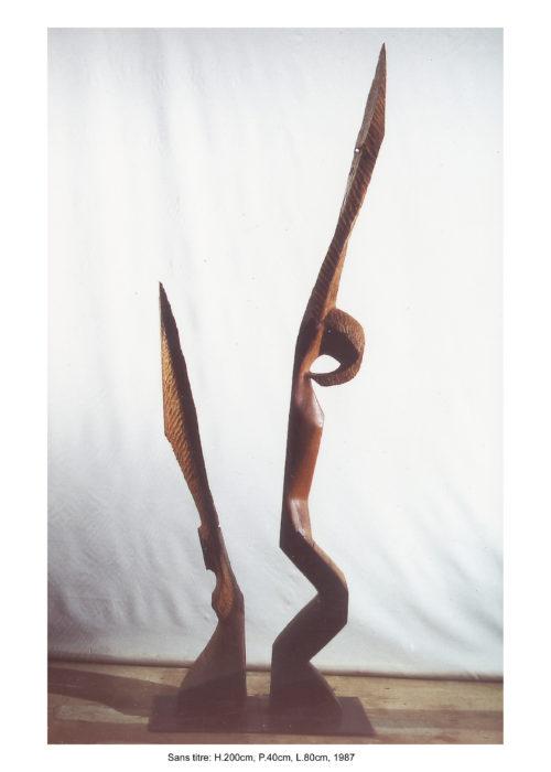 FORME ET SON OMBRE / FORM AND ITS SHADOW, bois, 240cm x 60cm x 35cm